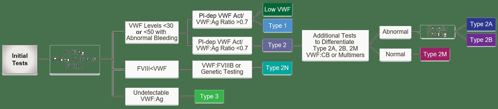 vWD flow chart for diagnostic process