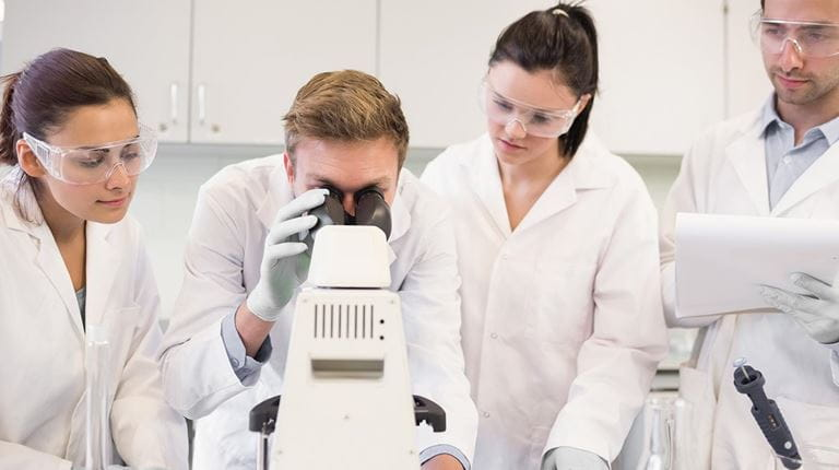 Young scientist in a lab working together